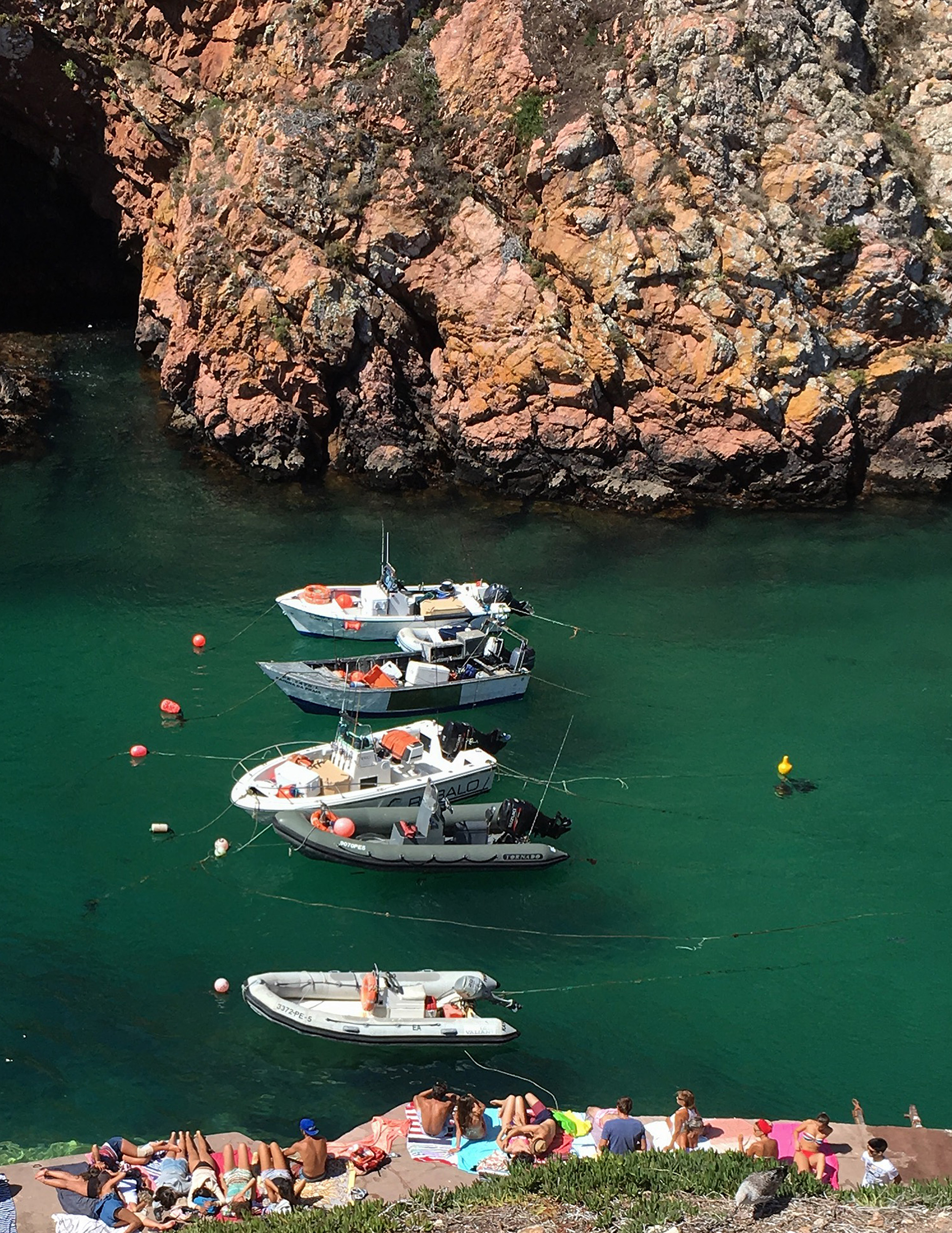 Barcos berlengas